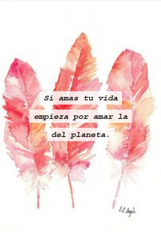Si amas tu vida empieza por amar la del planeta.