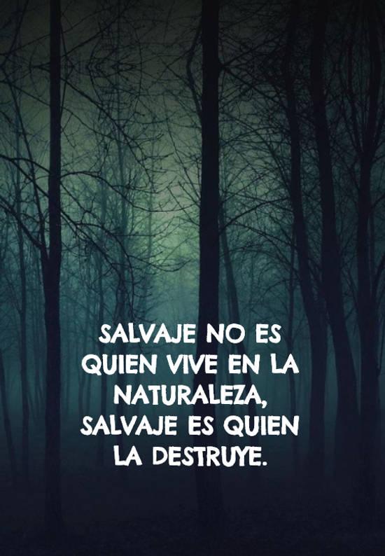 Salvaje no es quien vive en la naturaleza, salvaje es quien la destruye.