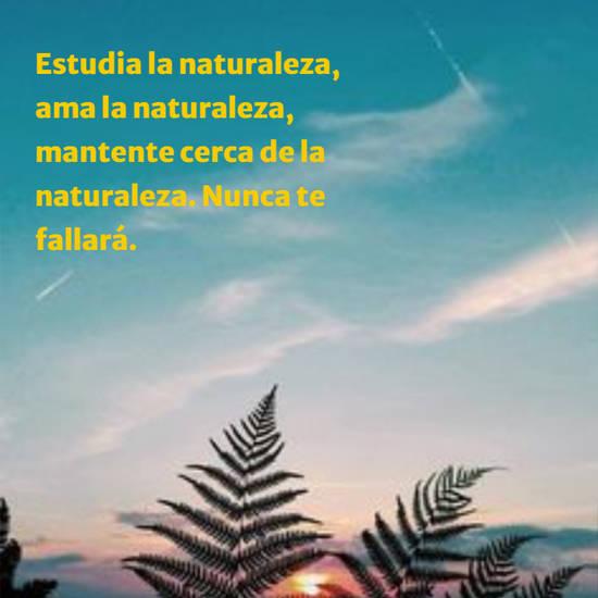 Estudia la naturaleza, ama la naturaleza, mantente cerca de la naturaleza. Nunca te fallará.