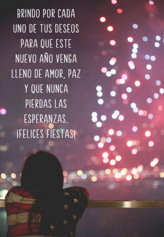 Brindo por cada uno de tus deseos para que este nuevo año venga lleno de amor, paz y que nunca pierdas las esperanzas.  ¡Felices Fiestas!