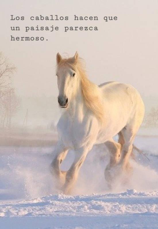 Los caballos hacen que un paisaje parezca hermoso.