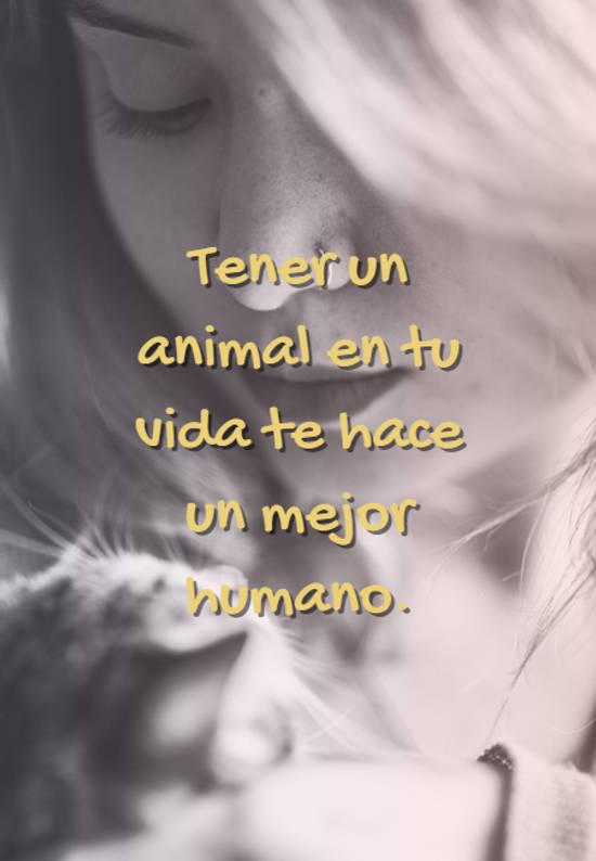 Tener un animal en tu vida te hace un mejor humano.