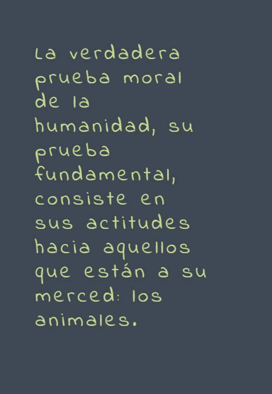 La verdadera prueba moral de la humanidad, su prueba fundamental, consiste en sus actitudes hacia aquellos que están a su merced: los animales.