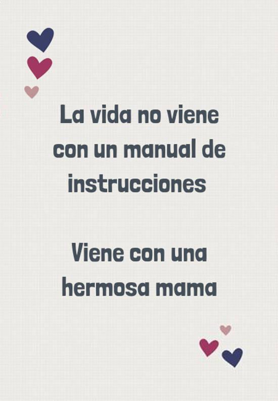 Frases para el Día de la Madre - La vida no viene con un manual de instrucciones   Viene con una hermosa mama