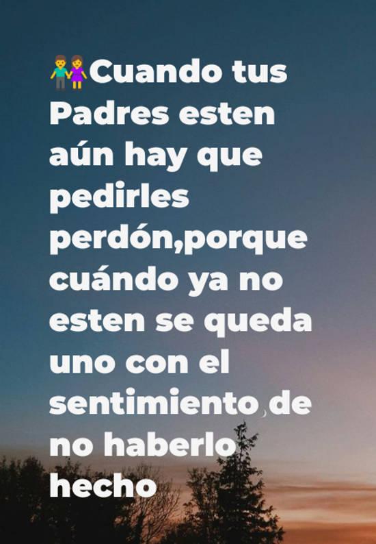 👫Cuando tus Padres esten aún hay que pedirles perdón,porque cuándo ya no esten se queda uno con el sentimiento de no haberlo hecho