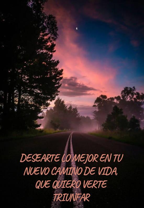 Imágenes de la frase: desearte lo mejor en tu nuevo camino de vida, que quiero verte triunfar