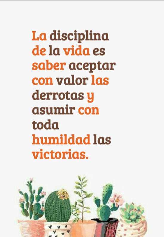 Imágenes de la frase: La disciplina de la vida es saber aceptar con valor las derrotas y asumir con toda humildad las victorias.