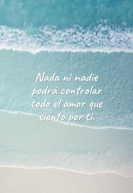 Frases de Amor - Nada ni nadie podrá controlar todo el amor que siento por ti.