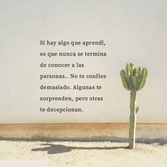 Frases de la Vida - Si hay algo que aprendí, es que nunca se termina de conocer a las personas.. No te confíes demasiado. Algunas te sorprenden, pero otras te decepcionan.