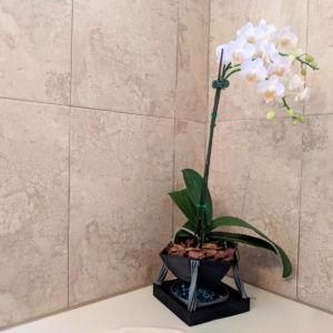 Modern Orchid Planter