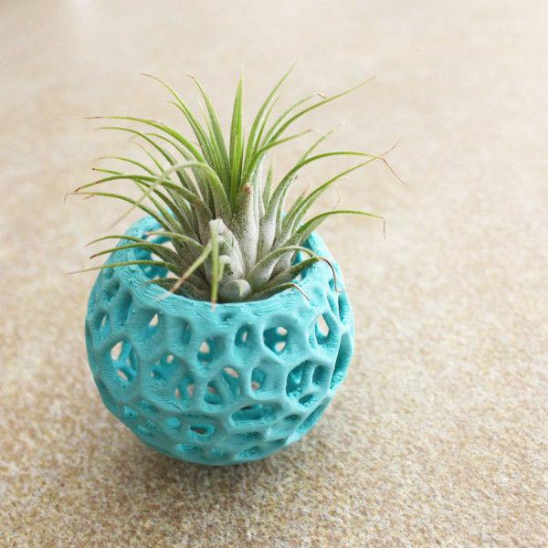 Small DIY Kokedama Set with Holder - Cute Air Plant Holder, Mini Orchid Pot, Mini Orchid Planter, Tiny Succulent Kokedama