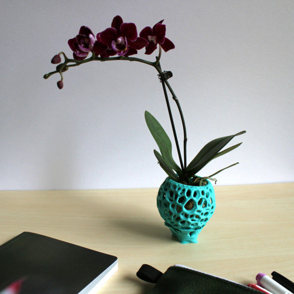 Small DIY Kokedama Set with Holder - Cute Air Plant Holder, Mini Orchid Pot, Mini Orchid Planter, Tiny Succulent Kokedama