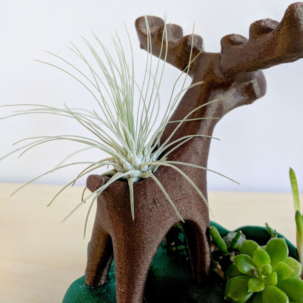 Moose Air Plant Holder and Succulent Planter, Cute Moose, Animal Planter, Moose Decor, Tabletop Planter, Room with a Moose, Airplant Stand