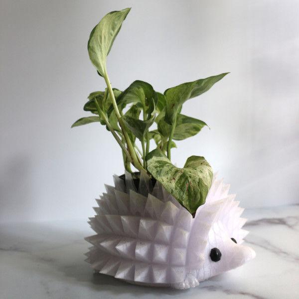 "Large Hedgehog Planter for 3.25"" Plants, Hedgehog Gifts, Animal Planter, Succulent Planter, Cactus Planter, Air Plant Holder"