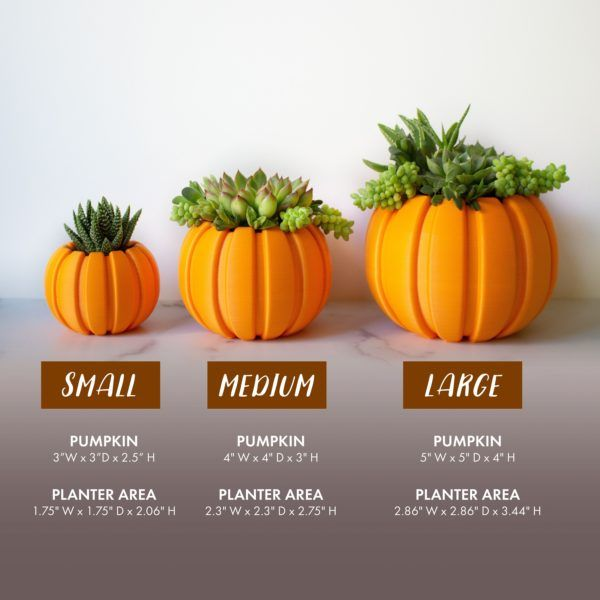 Succulent Pumpkin Planter, Fall Succulent Planter, Autumn Pumpkin Pot, Fall Decor Pumpkin, Thanksgiving Pumpkin, Thanksgiving Table Decor