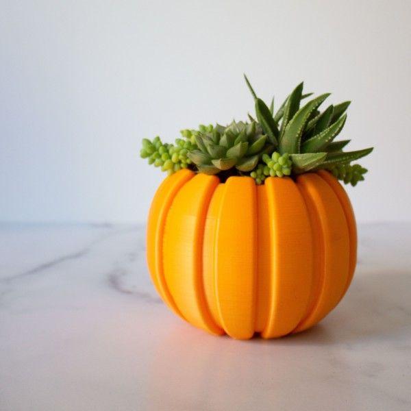 LARGE Succulent Pumpkin Planter, Fall Succulent Planter, Autumn Pumpkin Pot, Halloween Planter for Succulents, Succulent Arrangement Pot