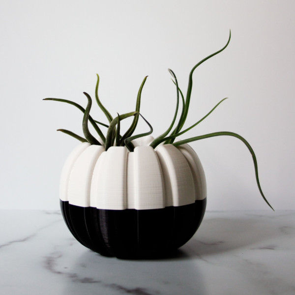 Creepy Halloween Pumpkin Planter, Black and White Pumpkin, Spooky Pumpkin