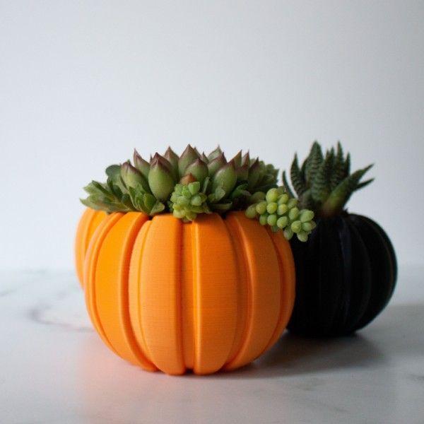 MEDIUM Pumpkin Planter, Succulent Fall Decor, Succulent Gift for Fall, Autumn Gift, Autumn Decor Gift