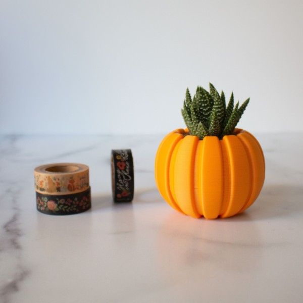 SMALL Succulent Pumpkin Planter, Fall Succulent Planter, Autumn Pumpkin Pot, Halloween Planter for Succulents, Succulent Pot