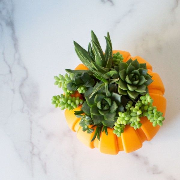LARGE Succulent Pumpkin Planter, Fall Succulent Planter, Autumn Pumpkin Pot, Halloween Planter for Succulents, Succulent Arrangement Pot