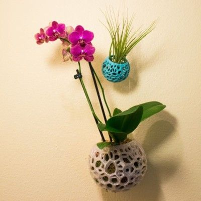 DIY Kokedama, Hanging Planter, Orchid Pot, Air Plant Holder, Moss Ball, Voronoi Hanging Planter, Jellyfish, Moss Planter, Bonsai Pot