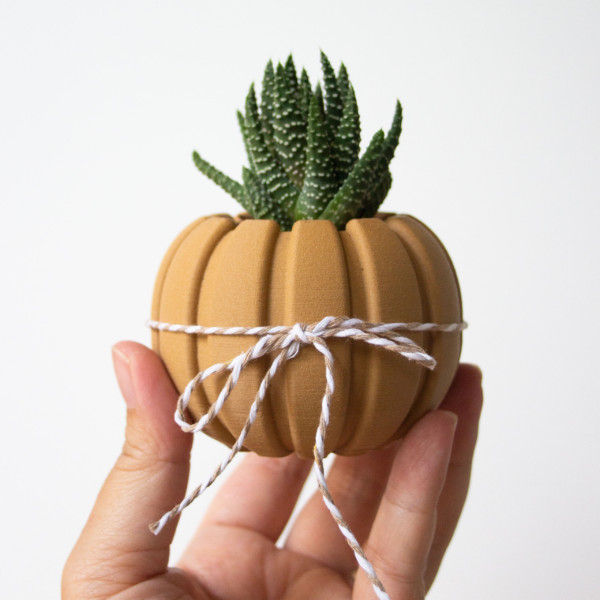 Wood Pumpkin Succulent Planter Centerpiece, Decorating Pumpkin for Autumn Decor, Small Plant Pot