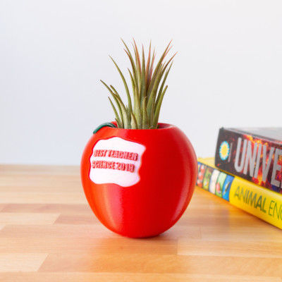 PERSONALIZED Apple Air Plant Holder for Teacher Appreciation Gift, End of Year Teacher Gift, Preschool Teacher Gift, Air Planter