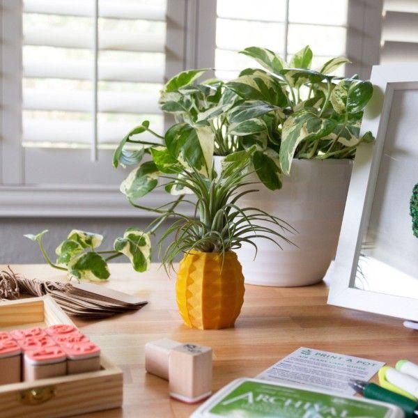 Pineapple Air Plant Holder, Pineapple Airplant, Geometric Air Plant, Air Pineapple Pot, Print A Pot Pineapple Planter, Air Plant Container