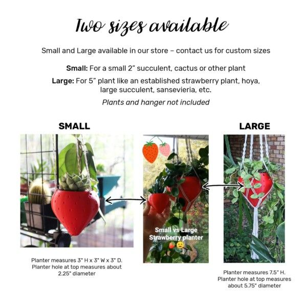 Small Strawberry Hanging Planter for Succulents, Outdoor Hanging Planter Pot for Strawberry Garden, Strawberry Pot, Hanging Planters