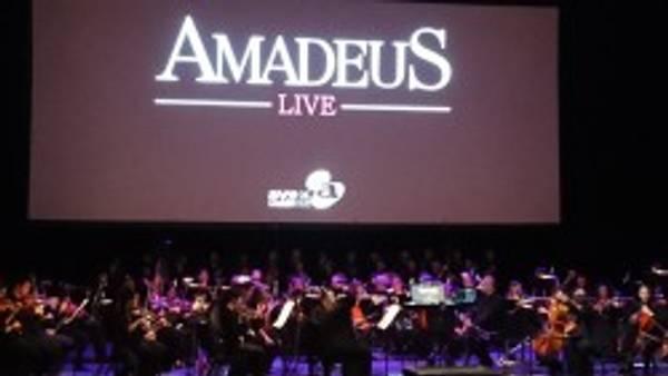 CONCERT REPORT    Tutti Contenti at Amadeus Live