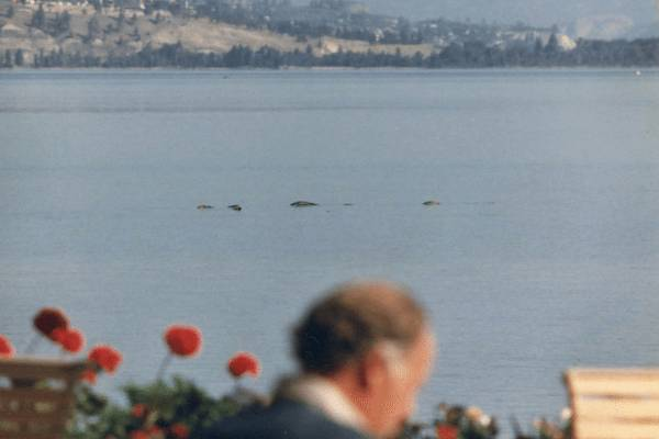 What Lurks Beneath: The Legend of Ogopogo