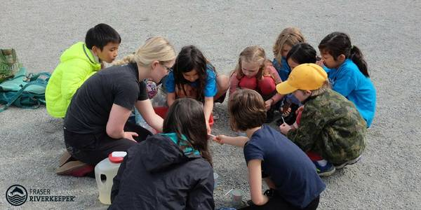 Citizen Science Investigation on East False Creek Reveals Flowing Pipes