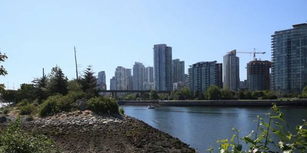 Call for clean swimming water in Vancouver's False Creek falls flat