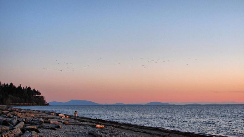 6 Beaches to Visit Instead of Kits Beach