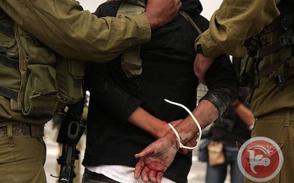 NVI Campaigns against youth prisons in U.S and Israel
