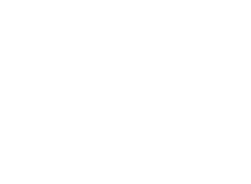 City Youth Council of Toronto