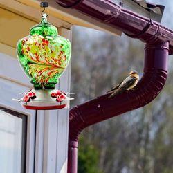 Pet Bird Feeder Hummingbird Feeder Courtyard Outdoor Drinking Fountain Hand-blown Glass Hanging Feeding Station Food Container