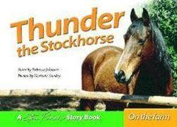 Thunder Stockhorse
