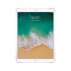 Apple iPad 5 Wi-Fi Only A1822 128GB Silver [Excellent Grade]
