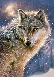 "Castorland B-133170cm Lone Wolf"" Premium Jigsaw Puzzle (500-Piece)"