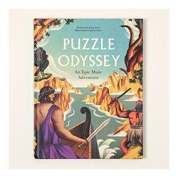 Puzzle Odyssey Maze Adventure