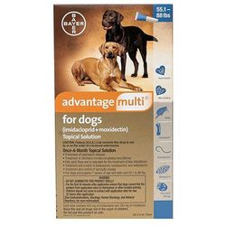Advantage Multi For Extra Large Dogs Over 25 Kg (Blue) 6 Pack