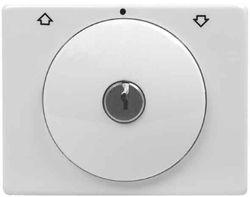 Hager ARSYS Zentralplatte mit Fernbedienung Schlüssel Kunststoff weiß P.