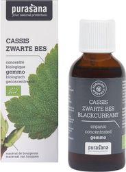 Purasana Puragem Zwarte Bes - Gemmotherapie - 50 ml