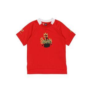 ADIDAS PERFORMANCE Camiseta funcional Rojo