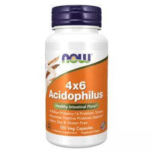 Now Foods 4x6 acidophilus 4b ufc - 120 veg caps