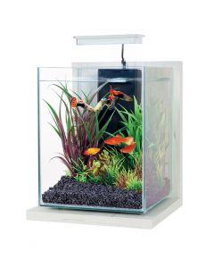 Zolux Aquarium Kit Jalaya Antique Wit 22x23x34,5cm 9,3 Ltr