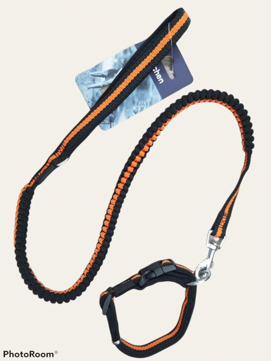 Correa elastica con collar zichen