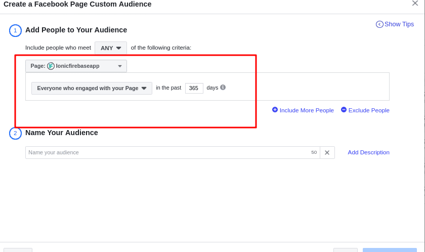 Facebook page custom audience