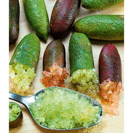 Garten-Welt Kaviar-Limette 1 Pflanze grün